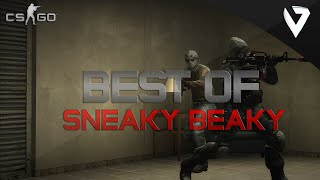 "CS:GO - Best of Pro ""Sneaky Beaky"""