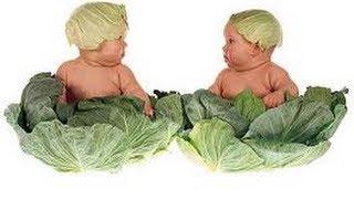 Чем полезна капуста: лечебные свойства капусты