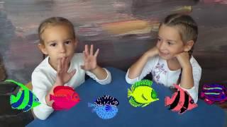 Покупаем рыбки в аквариум. Наши первые домашние животные.