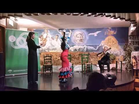 3- Fiestas.Jornadas Flamenco