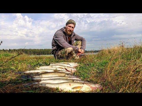 Осенняя Рыбалка. Ловля
