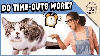 Cat TimeOuts:  Effective or Cruel?