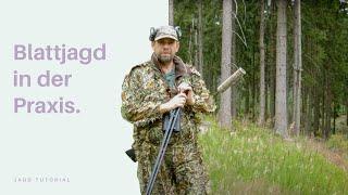 Zapętlaj Blattjagd in der Praxis   Jagd-Tutorial der Bayerischen Staatsforsten   Bayerische Staatsforsten