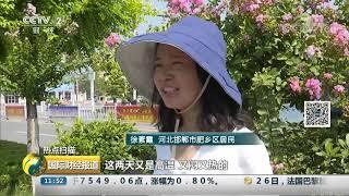 [国际财经报道]热点扫描 我国多地持续高温 居民用水用电量大幅增加| CCTV财经