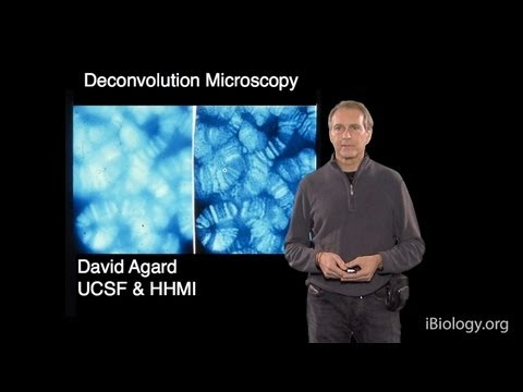 Microscopy: Deconvolution Microscopy (David Agard)