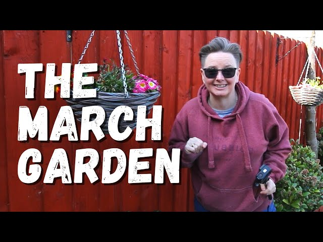A garden update for March 2020