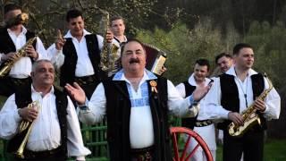Ionică Ivan   Tot pră drum pră lângă gard