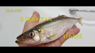 Зимняя рыбалка на Сахалине. 04 02 2020 В поисках зубаря