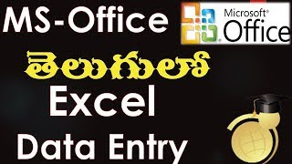 MS Office in Telugu - Data Entry in Excel