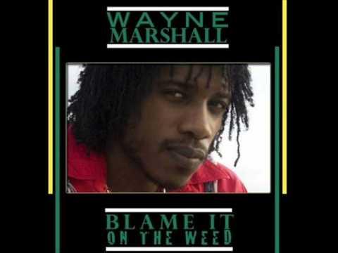 Wayne Marshall - Perilous Time