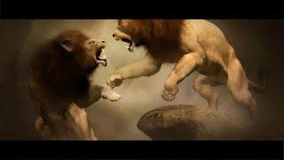 Самые жуткие схватки животных в дикой природе Часть2!!!