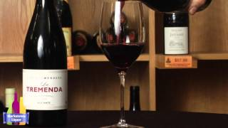 Wine Time with Mike & Holly - Enrique Mendoza