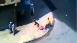 شاهد شراسة الكلاب مع الرجل خطير جدا في المغرب