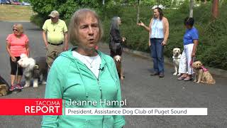 Non-profit organization that works with owners and handlers of assistance service dogs in the puget sound region.
