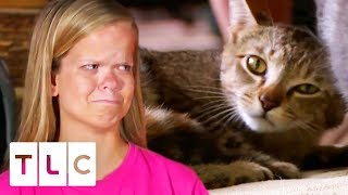 The Girls Rush Their Pet Cat River To The Animal Hospital | 7 Little Johnstons