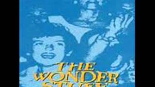 THE WONDER STUFF - THE SIZE OF A COW - RADIO ASS KISS