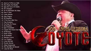 El Coyote Sus Grandes Exitos    Las Mejores Canciones De El Coyote