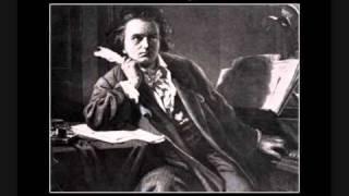 Sinfonia n° 9 - Allegro ma non troppo, un poco maestoso [1/2]