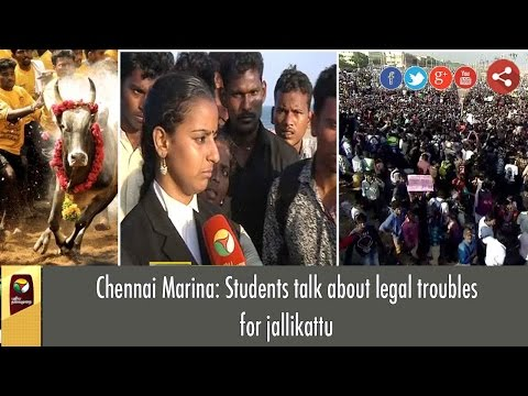 Chennai Marina: Students talk about legal troubles for jallikattu
