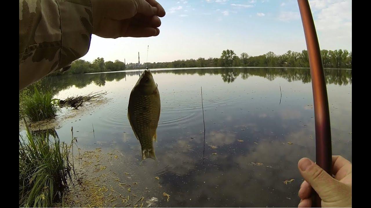 Смотреть видео рыбалка на удочку карася