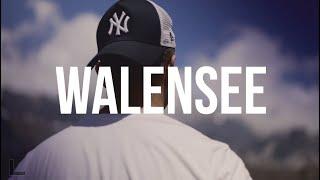 Walensee, Switzerland - Cinematic video