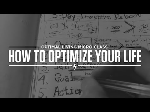 How To Optimize Your Life - The 10 Principles Of Optimal Living!