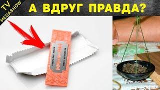 15 мифов в СССР в которые верили подростки