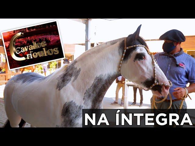 PROGRAMA CAVALOS CRIOULOS na ÍNTEGRA 27/09/2020