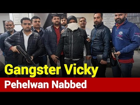 Delhi Police Arrests Wanted Gangster Vicky Pehelwan | News Nation
