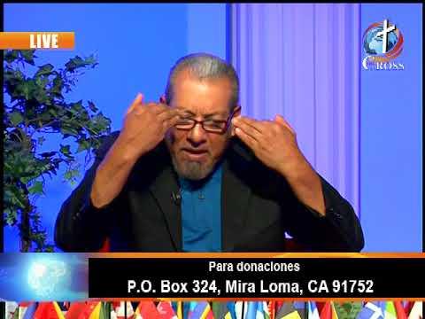 Fresh Seed Samuel Padilla 08-15-2017