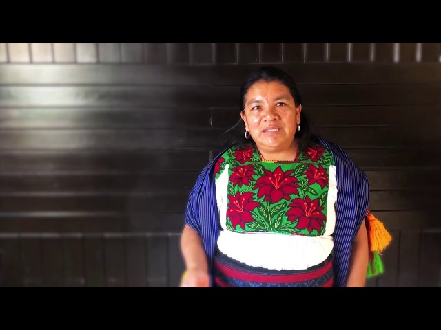 Palabra de Mujer - Gobierno de Michoacán