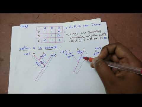 Cladogram Exam Question-1(CSIR - 2 Marks)