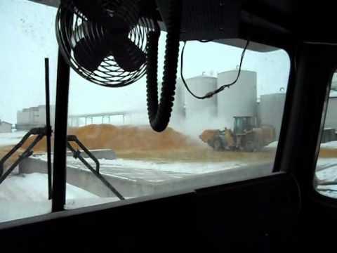 WDG / Modified feed / Ethanol Plant