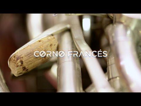 Resonancias, la armonía del sonido: Corno francés