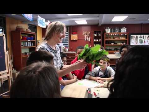 The Edible Schoolyard Project – green education for kids | Anthropologie