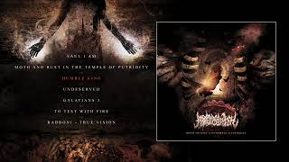 Скачать Abated Mass Of Flesh Moth And Rust In The Temple Of Putridity 2018 FULL EP