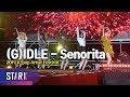 2019 K-pop Artist Festival '(G)IDLE - Senorita' ((여자)아이들 - Senorita, 2019 케이팝 아티스트 페스티벌)