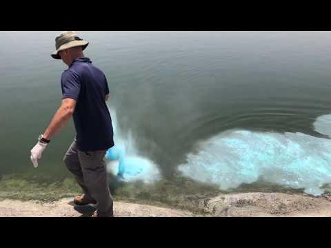 Lake Guard Blue - Manual Application (Nitzanim Reservoir)