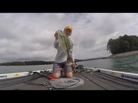 MONSTER Spots On Swimbaits!!! ~ Lake Lanier