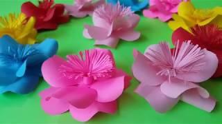 Cara Membuat Bunga dari Kertas Sangat Mudah Kerajinan Sederhana