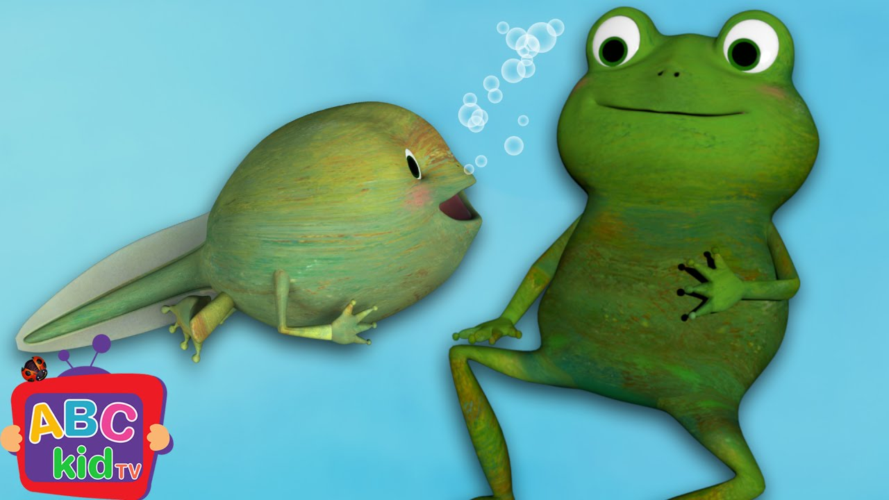 Frog Song (Life Cycle of a Frog) | CoCoMelon Nursery Rhymes & Kids Songs