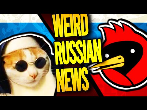 Healing Cat on Sale and Omsk Surprises [Weird Russian News]