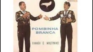 POMBINHA BRANCA (Gravação Original) com Tibagi e Miltinho