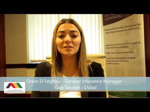 BPFA Arab Insurance Institute