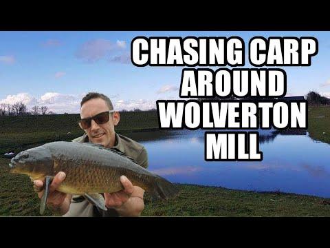 Chasing Carp Around Wolverton Mill