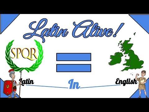 English And Latin : A Few Derivatives