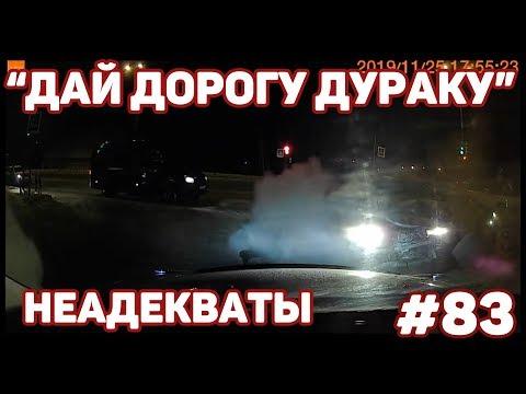 "Автоподборка ""Дай дорогу дураку""🚗Неадекваты#83"