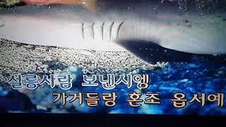 """[커버 """"도언""""] 혜은이 - 감수광 -  커버 곡 연습영상, cover, k-pop, korea music"""