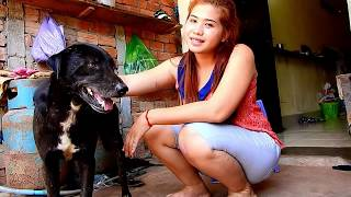 Why the lovely smart dog trying doing this to beautiful owner