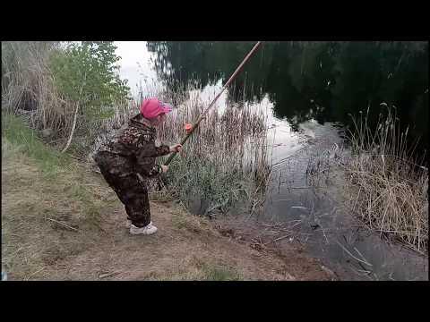Рыбалка в Омской области. Тюкалинск- 2-Пятилетка 2.06.19